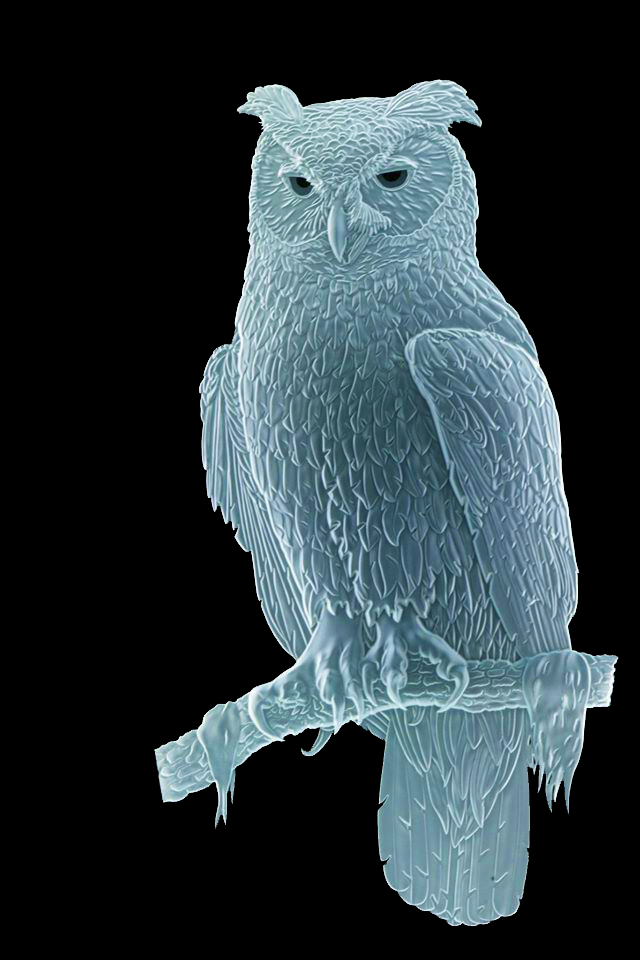 Sand Carved Glass Great Horned Owl by Lex Melfi