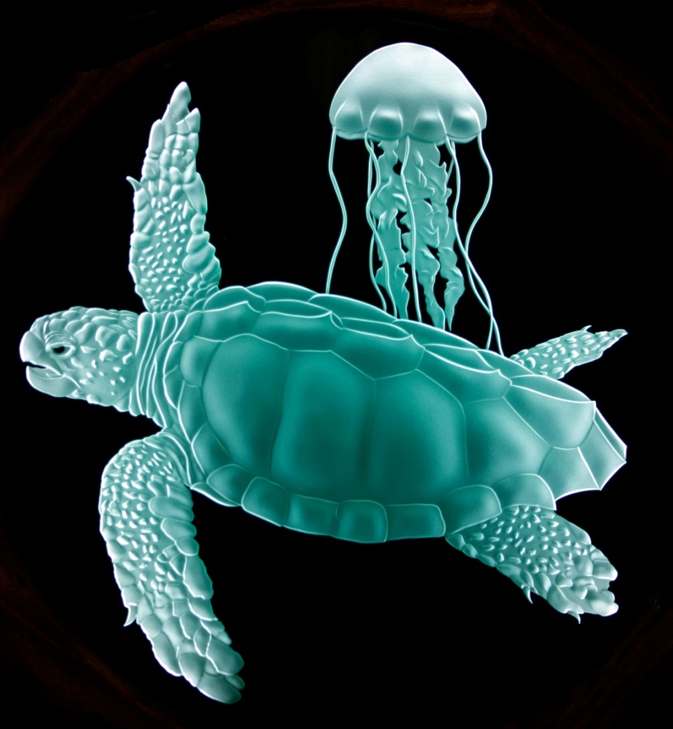 Loggerhead Turtle Detail - Sand Carved Glass by Lex Melfi